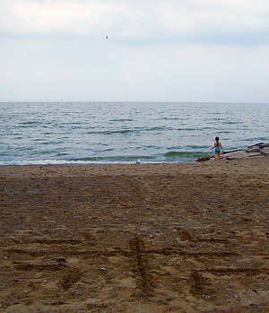 woodbine-beach-classic-labyrinth-sand-start
