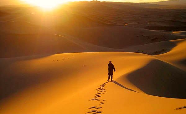 king walking in desert labyrinth